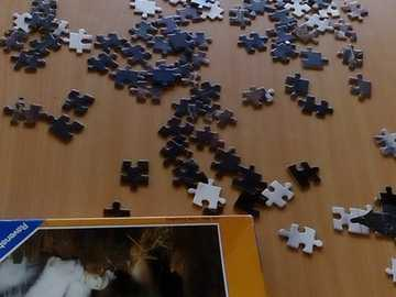 Puzzle cats - Puzzle for children? No! :-)