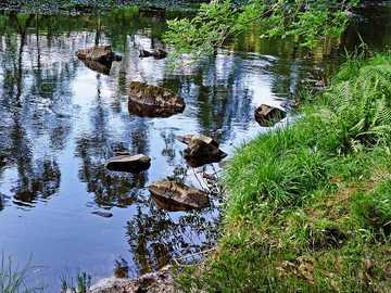 zielona trawa w pobliżu akwenu w ciągu dnia - Rogie Falls  Rogie Falls to seria wodospadów na Black Water, rzece w Ross-shire w Highlands w Szkoc