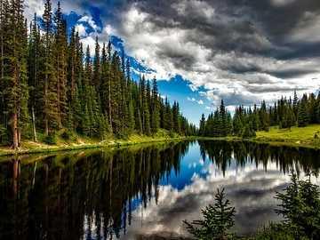 Eau et forêt - Un paysage magnifique. Les charmes de la nature