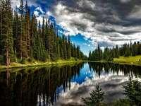 Vatten och skog