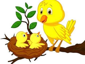 Oiseau et leur maison - Identifier l'oiseau et sa maison