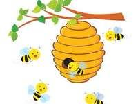 Honigbiene und ihr Zuhause - Honigbiene lebt im Bienenstock.