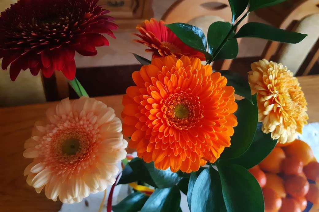 gerberas coloridas - gerberas coloridas en un florero