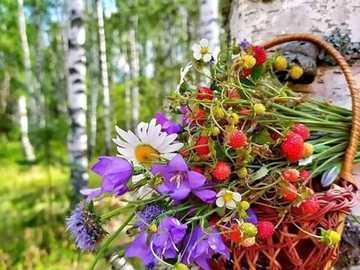 jagody i kwiaty - jagody i kwiaty między brzozami