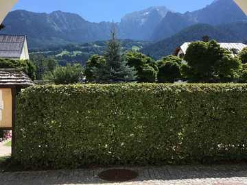 Alpy pohledem z podloubí - Alpy pohledem z podloubí
