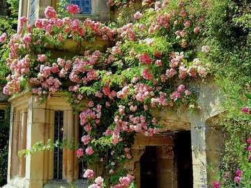 W ogrodzie ... - W ogrodzie ...........