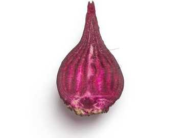 purple onion on white surface - High-quality photo of a beet cut on a white background.