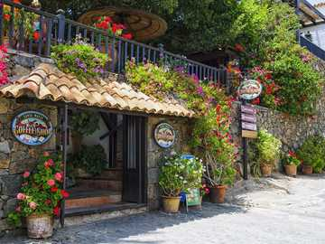 Canary Islands - cafe drowning in flowers