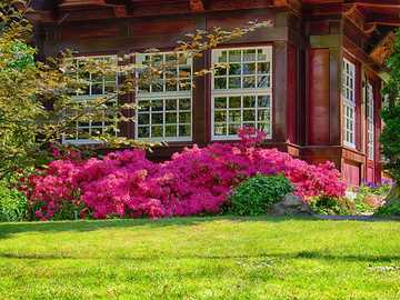Garden pavilion - garden gazebo - flowers ---
