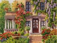 Blauregen am Haus - Haus, Wisteria, Kletterrosen, Blumen