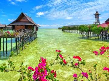 Vodní domy, Malajsie - Vodní domy, květiny, Malajsie
