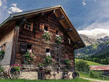 Alpine landscape - Alpine wooden house ---