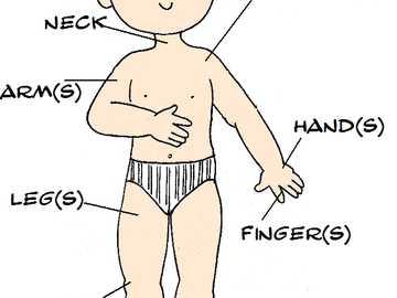 CZĘŚCI CIAŁA - Złóż układankę, a następnie przywołaj wszystkie części ciała, które pamiętają