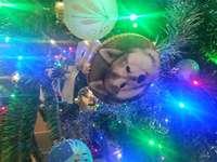 luci dell'albero di Natale del cane