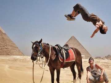 egypte / voyage - le voyage est cool et génial