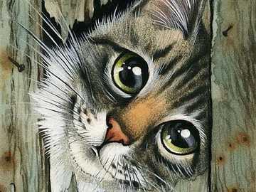 Lovely kitten - Picaro and charming kitten