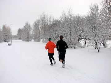 Snow jogg - deux personnes qui courent sur le champ de neige près des arbres.