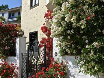 Entrée de la maison - compositions florales à l'entrée de la maison