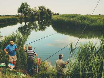 Prawie sielankowy - trzech mężczyzn łowiących w ciągu dnia. Canale Riello, Włochy