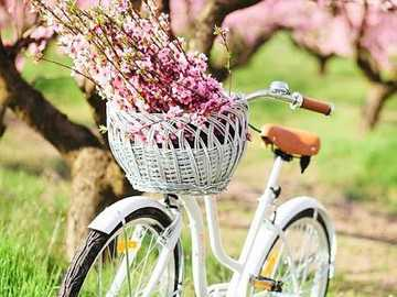 Bicyclette ... - Bicyclette .....................