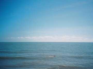 personne, surfer, sur, mer, sous, ciel bleu, pendant, jour - Vue d'une personne nageant sur le dos dans une mer vide. Tourné sur film.