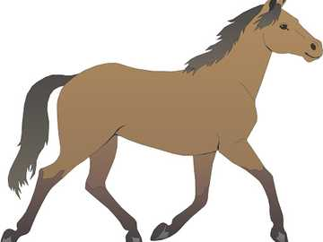 horse Puzzle - Solve puzzle of horse