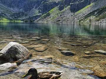 In the Tatra Mountains. - Landscape puzzle.
