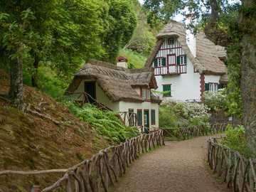 Madeira ---- - thatched forest house ----