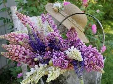 Kwiaty ... - Kwiaty .....................