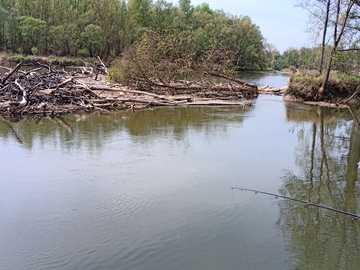 Rzeka Mura - zbieżność strumienia Kerka - Zlew Mura-Kerka pod Czerniowcami, OGROMNY Suma można znaleźć tutaj. Jeśli jesteś uzależniony,