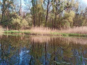 Letenyei Long Water - Letenyei Miejsce do połowów dalekomorskich