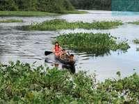 Warao Tribe - Καθαρό νερό και αποχέτευση