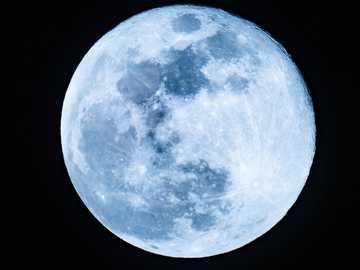 Luna piena - luna piena nel cielo notturno. Naples, FL, USA
