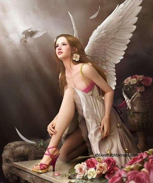La fée, les fleurs et la colombe