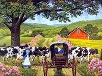 Paisaje rural.