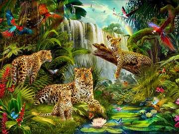 Tropische dieren. - Puzzel. Tropische dieren.