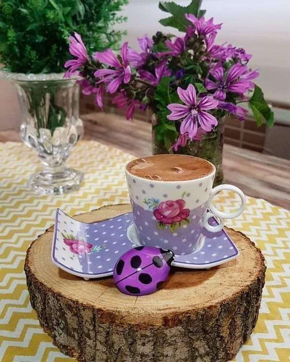 hermosa taza de café - hermosa taza de café - interior