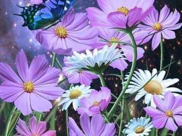spazio floreale - fiore cosmo e farfalle - uno spettacolo magico