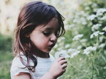 Pissenlit - fille tenant une fleur blanche pendant la journée. Montpellier, France