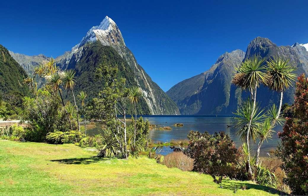 Nowa Zelandia - Zatoka Milforda ---------------