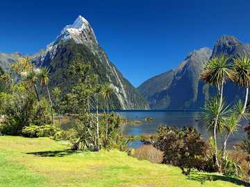 New Zealand - Milford Bay ---------------