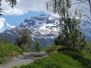 Panorama - góry,łąka,kwiaty,śnieg