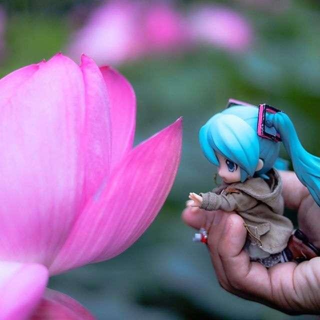 Искам да докосна това цвете