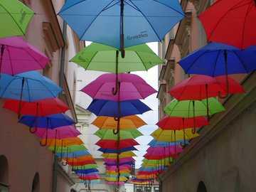 Parapluies à Tarnów - Une rue avec des parapluies colorés