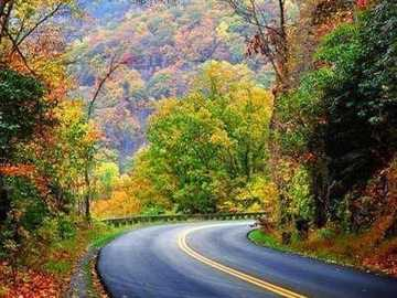 autumn in the mountains - autumn in the mountains - beautiful nature