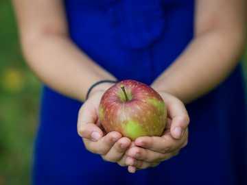 persona con manzana verde fruta - Chica en vestido azul dorado una manzana.