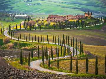 Toscana - Rompecabezas de paisaje.