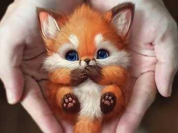 mały Lis - jest bardzo słodki, pulchny i drobny