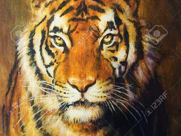 dziki tygrys pomarańczowy - natura zwierząt