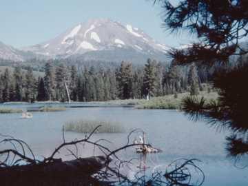 Fotografia slajdów 120 mm z lat 70 - zielone drzewa w pobliżu jeziora i gór w ciągu dnia.